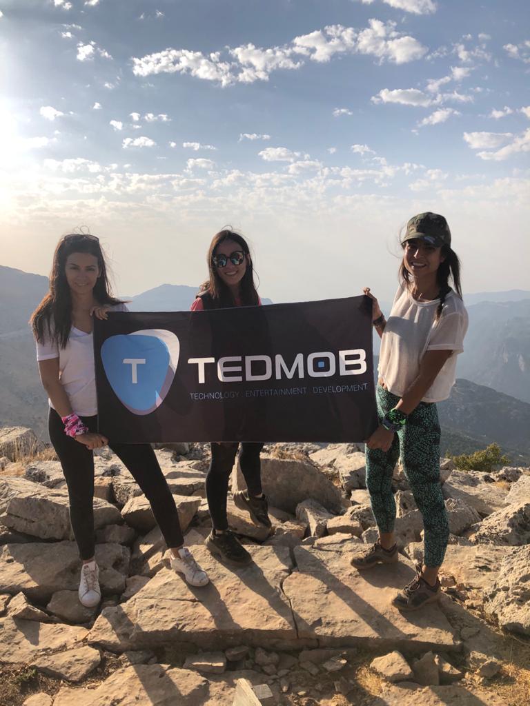 Tedmob Hangout